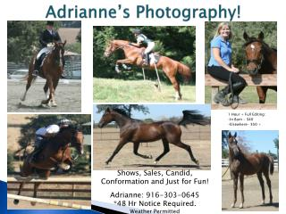 Adrianne�s Photography!