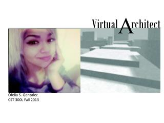 Virtual      rchitect