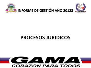 INFORME  DE GESTIÓN AÑO  2012 3