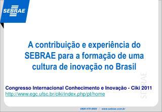 A contribuição e experiênciado SEBRAEparaa formação de uma cultura de inovação no Brasil