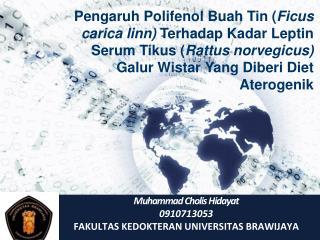 Muhammad Cholis Hidayat 0910713053 FAKULTAS KEDOKTERAN UNIVERSITAS  BRAWIJAYA