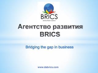 Агентство развития    BRICS