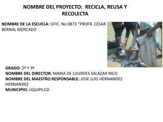 NOMBRE DEL PROYECTO:  RECICLA, REUSA Y RECOLECTA