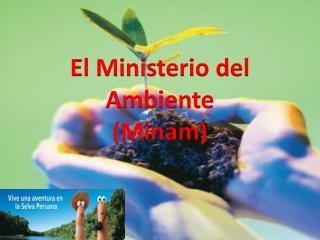 El Ministerio del Ambiente (Minam)