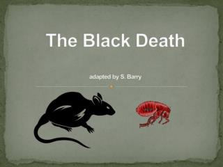 The Black Death adapted by S. Barry