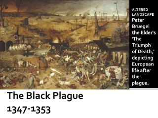The Black Plague  1347-1353