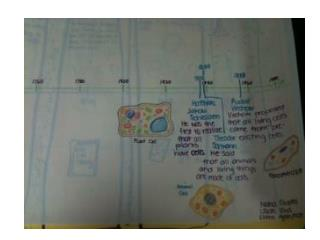 The Cell Theory – Timeline Rubric