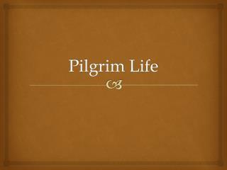 Pilgrim Life
