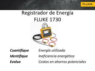 Registrador de Energía FLUKE 1730