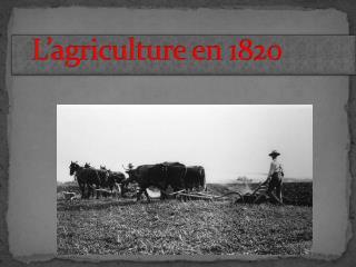 L'agriculture en 1820