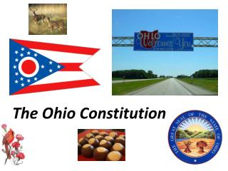 The Ohio Constitution
