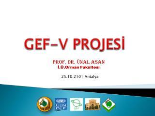 GEF-V PROJESİ