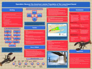 Operation: Recover  the American Lobster Population of the Long Island  Sound