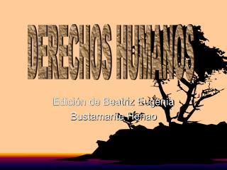 Edición de Beatriz Eugenia  Bustamante Henao