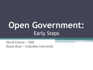 Open Government: Early Steps