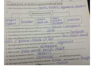 locomotion review packet answers
