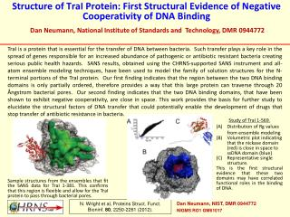 Structure of  TraI  Protein: First Structural Evidence of Negative  Cooperativity  of DNA Binding