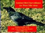 Sentinel Bird Surveillance for West Nile virus