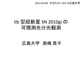 IIb 型超新星  SN 2010gi  の 可視測光分光観測
