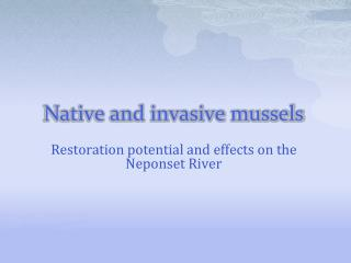 Native and invasive mussels