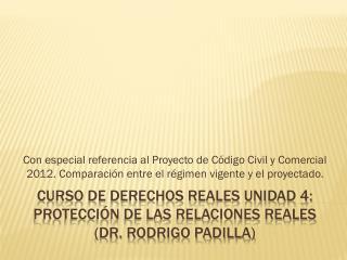 Curso de derechos reales Unidad 4: Protección  de las relaciones  reales ( D r. Rodrigo padilla)