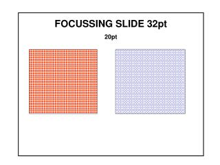 FOCUSSING SLIDE 32pt 20pt