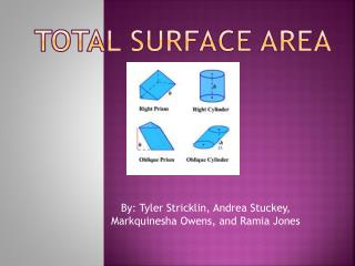 Total surface area