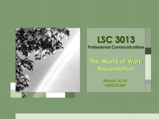 LSC  3013 Professional Communications