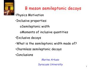B meson semileptonic decays