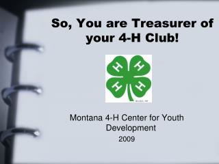 So, You are Treasurer of your 4-H Club!