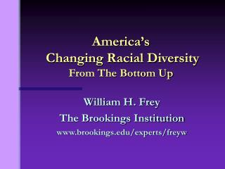America's  Changing Racial Diversity From The Bottom Up