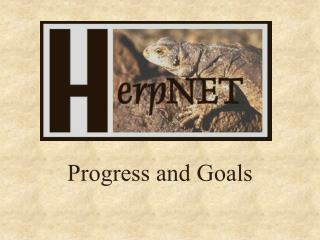 Progress and Goals