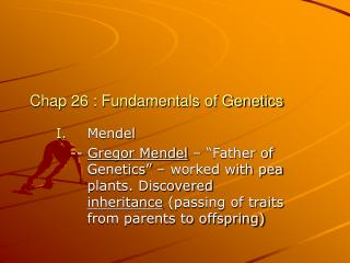 Chap 26 : Fundamentals of Genetics