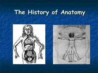 The History of Anatomy