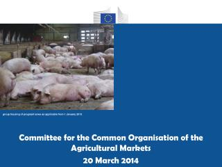 Committee for the Common Organisation of the Agricultural Markets 20 March 2014