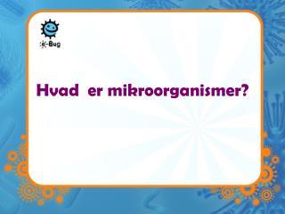 Hvad  er mikroorganismer?