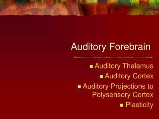 Auditory Forebrain