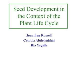 Seed Development in the Context of the Plant Life Cycle