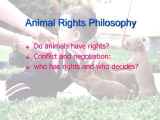 Animal Rights Philosophy