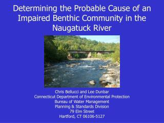 Determining the Probable Cause of an Impaired Benthic Community in the  Naugatuck River