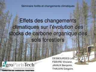 Effets des changements climatiques sur l  volution des stocks de carbone organique des sols forestiers