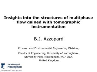Insights into the structures of multiphase flow gained with tomographic instrumentation