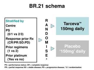 BR.21 schema