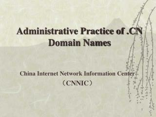 China Internet Network Information Center (CNNIC )