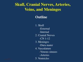 Skull, Cranial Nerves, Arteries, Veins, and Meninges