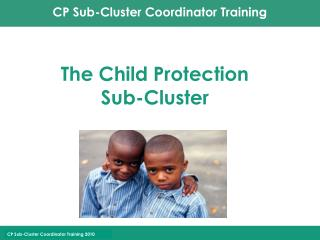 The Child Protection  Sub-Cluster