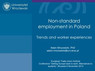 Non-standard employment in Poland  Trends and worker experiences