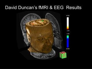David Duncan's fMRI & EEG  Results
