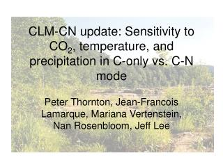 CLM-CN update: Sensitivity to CO 2 , temperature, and precipitation in C-only vs. C-N mode