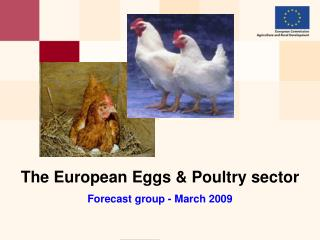 The European Eggs & Poultry sector